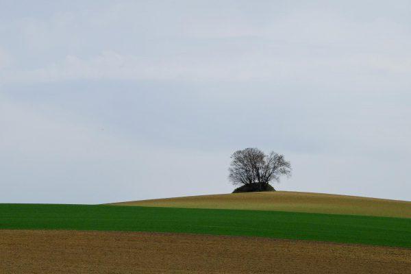 Scheyern-09.jpg